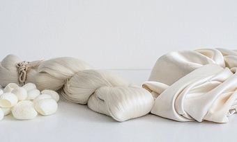 Od kokonu k niti – Jak se vyrábí hedvábí